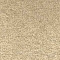 lifestyle Allure 303 OYSTER carpet